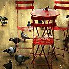 Pigeon feast NY case by Sonia de Macedo-Stewart