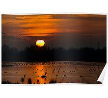 Summer Leys Sunset, Northamptonshire, UK Poster