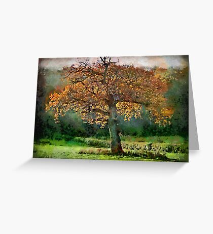 Tree in Autumn, Somerset, UK Greeting Card