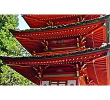 Pagoda, Japanese Tea Garden, Golden Gate Park, San Francisco, California Photographic Print