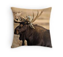 Moose in Teton Park Throw Pillow