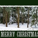 Merry Christmas Card by Terrie Taylor