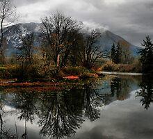North Bend, Washington by Debbie Stika