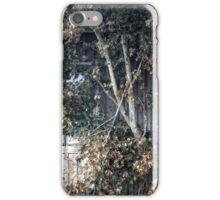 17.10.2015: Maple Trees iPhone Case/Skin