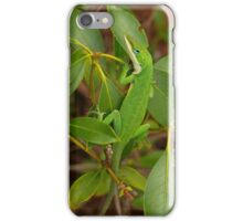 Blue Eyes I-Phone Case iPhone Case/Skin