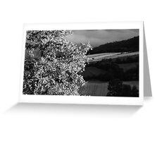 Mugello-Toscana Greeting Card