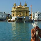 Pilgrim bathing, Golden Temple Amritsar by jphenfrey
