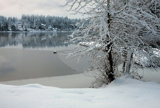 Winter at the Lake by TerrillWelch