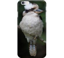 Kookaburra iPhone Case iPhone Case/Skin