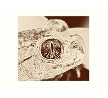 Spade foot Toad Art Print