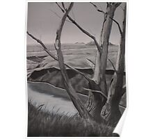 Tree By Creek Poster