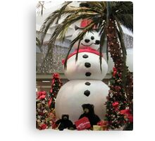 Frosty At The Mall Canvas Print