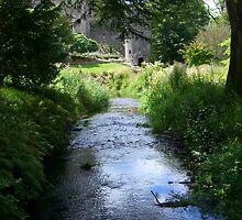 Blarney Castle, Blarney, Cork, Ireland by LESpiker