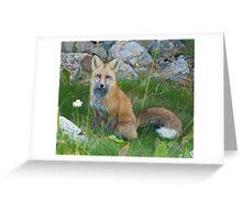 September - Friendly fox. Greeting Card