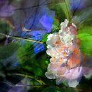 Joyful Sound by Lozzar Flowers & Art
