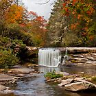 Mill Shoals by Amy Jackson