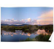 June - Wetlands. Poster