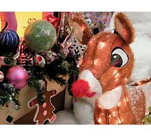 Rudolph The Red Nosed Reindeer Photographic Print