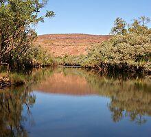 Fitzroy River ~ Mornington by Robert Elliott