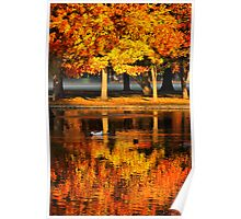 Reflection of Fall Poster