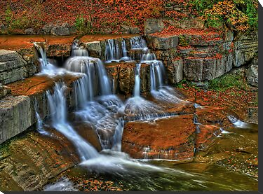 Falls In The Fall by Evelina Kremsdorf
