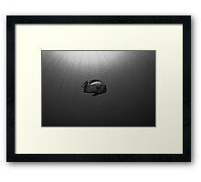 Batfish Framed Print