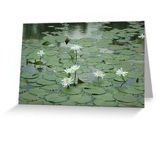 Dance of the water lilies Greeting Card