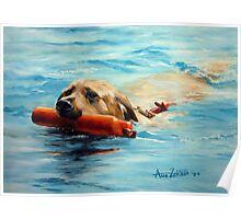 Swim! Poster