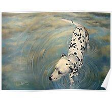 Dalmatian In The Sky Poster