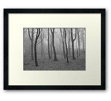 The mist Framed Print