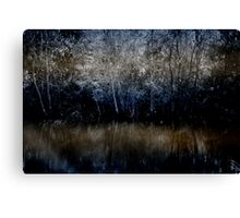 This middling zone Canvas Print