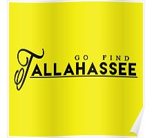 Go Find Tallahassee Poster