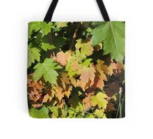Autumn Leaves (Twycross) Tote Bag