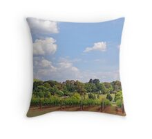 Southern Higlands Winery Panorama Throw Pillow