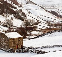 Winter at Angram, Swaledale, Yorkshire by fotodayz