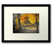 Autumn Silence Framed Print