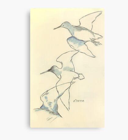 Sketching birds Metal Print