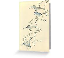 Sketching birds Greeting Card
