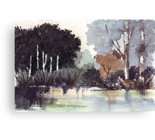 The river trees... Canvas Print