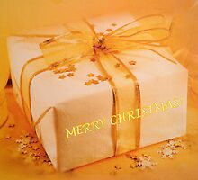 Merry Christmas Parcel by ©The Creative  Minds