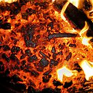 Freezer Burnt by Damien  Dust