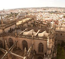 Curvy Sevilla by Ed Hemming