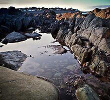 Rockpool by Chris Cardwell