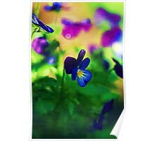 Butterfly Kisses.... Poster