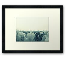 Frost All Over Framed Print