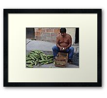 Corn - the holy plant for the Mexican people - Maiz - la planta sacrada para los Mexicanos Framed Print