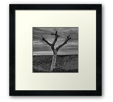 The peace and quiet Framed Print