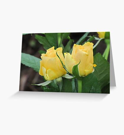 A Yellow Pair Greeting Card