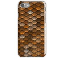 Everything to Scale iPhone Case/Skin