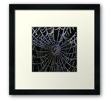 web of diamonds Framed Print